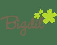 BIGDIL