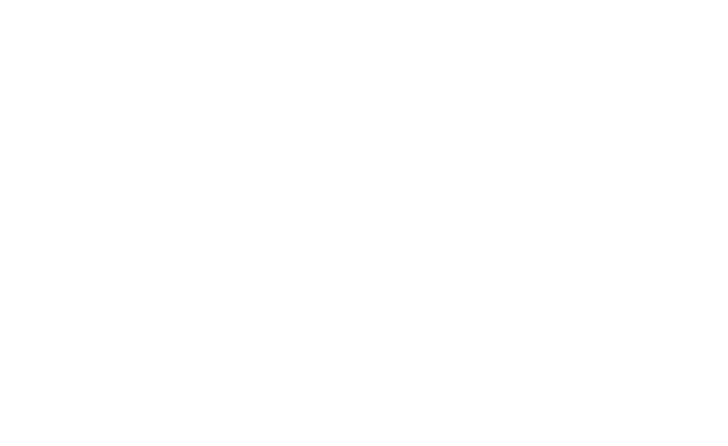 CARRE EDEN SHOPPING CENTER